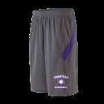 Grey/Purple Bash Short